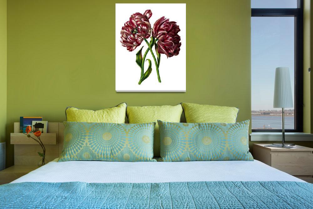 """Beautiful Flower Drawing Framed Print""  by buddakats1"