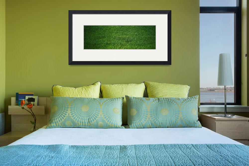 """""""Green grass&quot  by Panoramic_Images"""