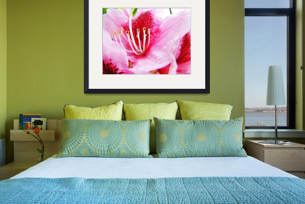 """""""PINK RHODODENDRUMS Flowers Art Prints Flower&quot  (2009) by BasleeTroutman"""