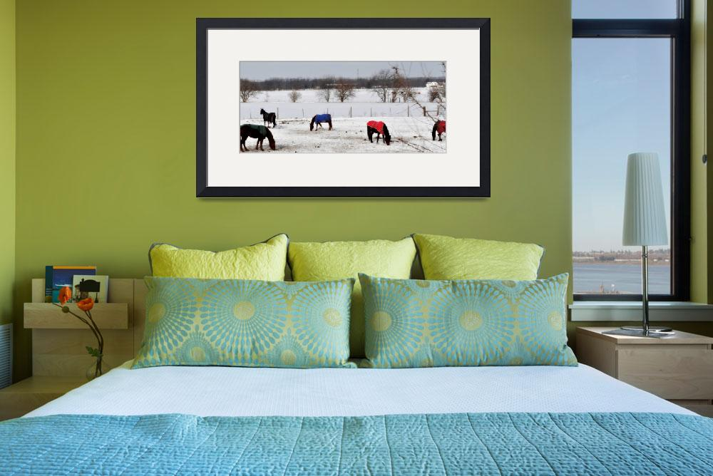 """""""Horses in Winter&quot  (2010) by shutterbugchelle"""