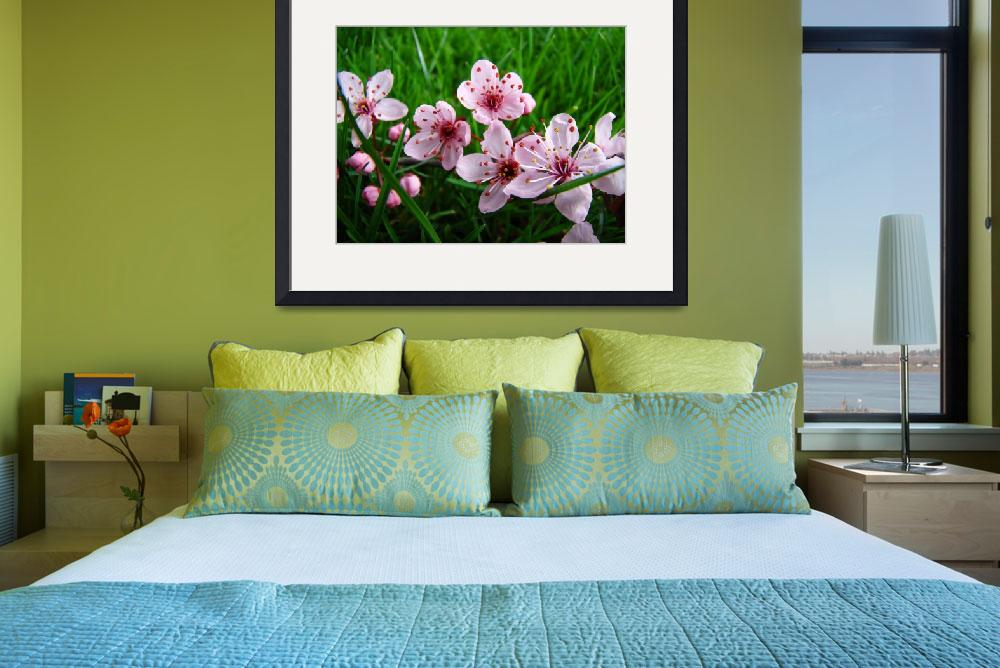 """Spring Flowers Pink Tree Blossoms Art Prints&quot  (2009) by BasleeTroutman"