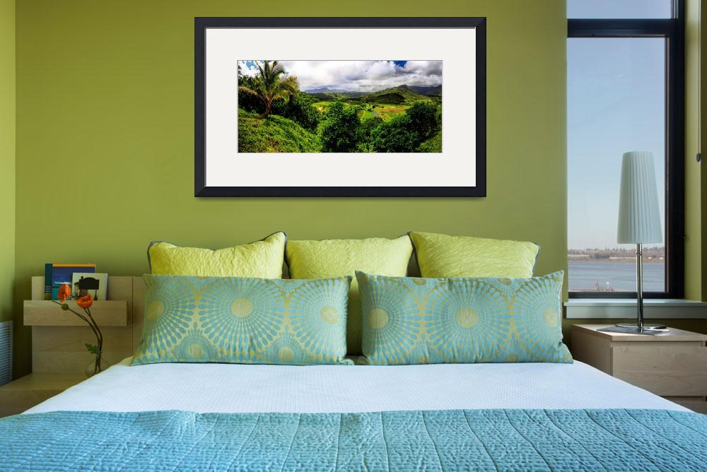 """""""Hanalei Valley""""  (2011) by RichImages"""