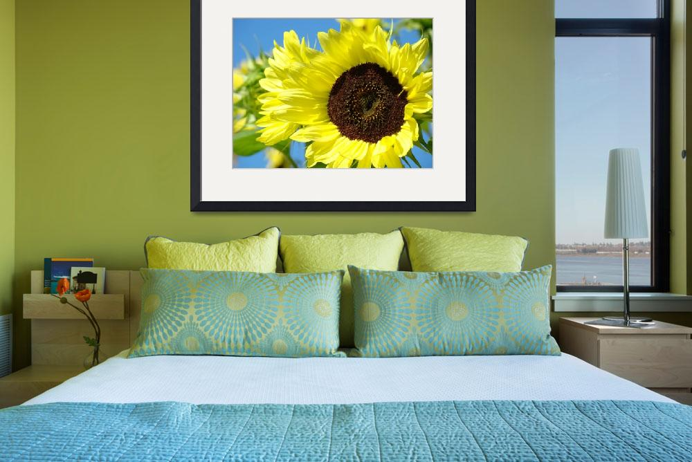"""""""Holiday Christmas Gifts SUNFLOWER Art Baslee&quot  (2009) by BasleeTroutman"""
