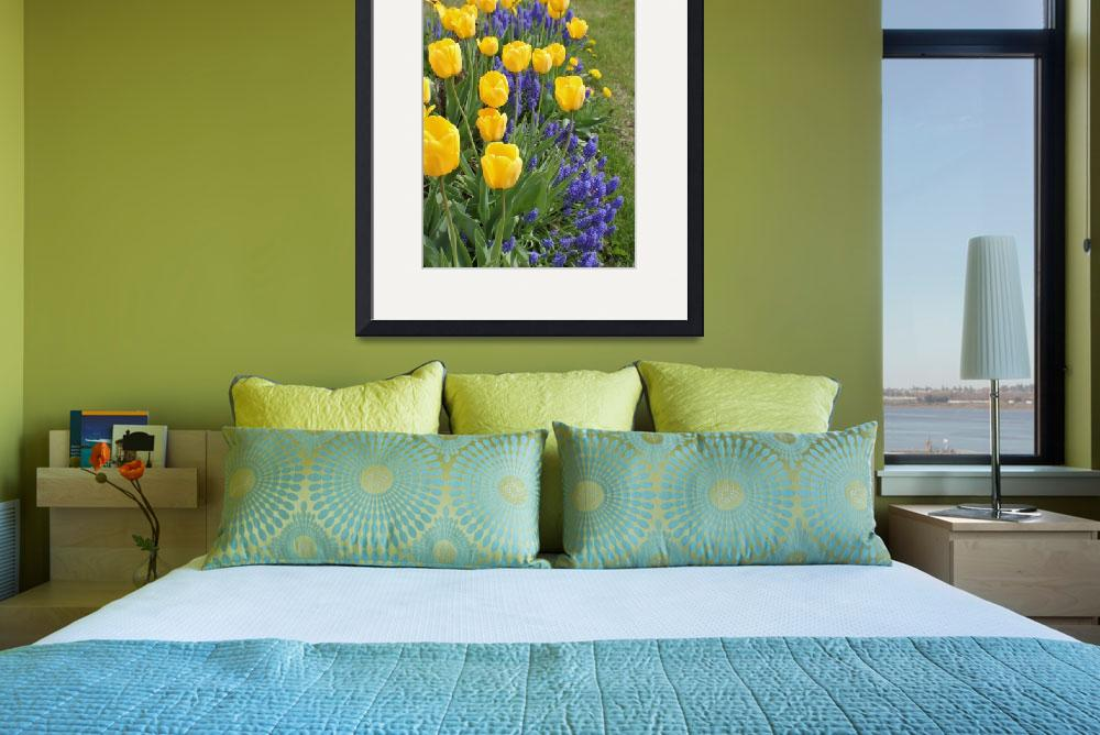 """""""yellow tulips&quot  (2011) by psalm34ministry"""