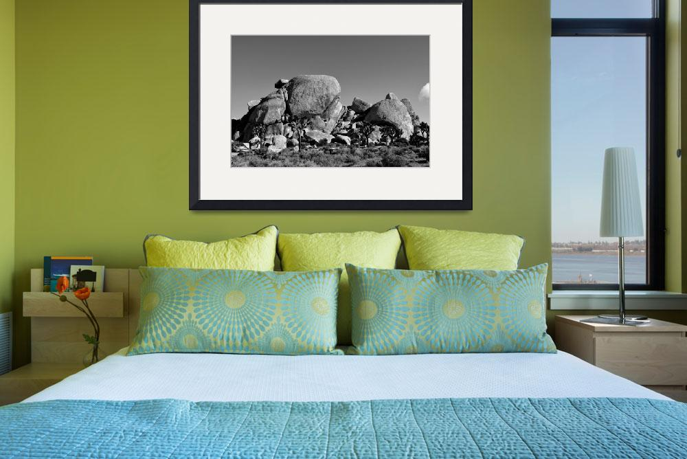 """""""Rocky Outcropping B&W&quot  (2014) by LubitArts"""