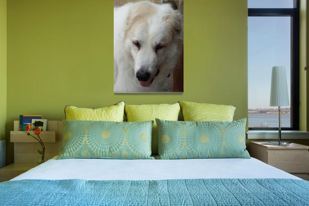 """""""Willow - the Great Perinese Dog&quot  (2009) by MariaK"""