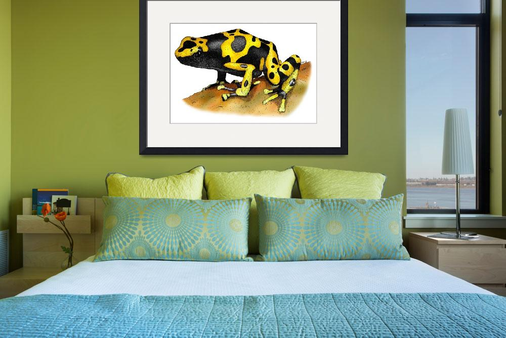 """Yellow Banded Poison Dart Frog&quot  by inkart"