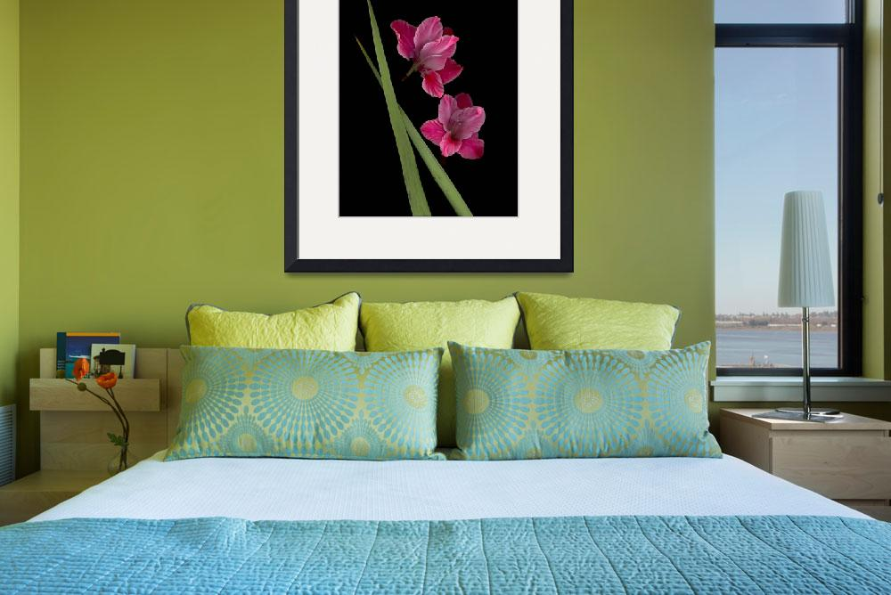 """Gladiola Art&quot  (2008) by LindaCavaney"