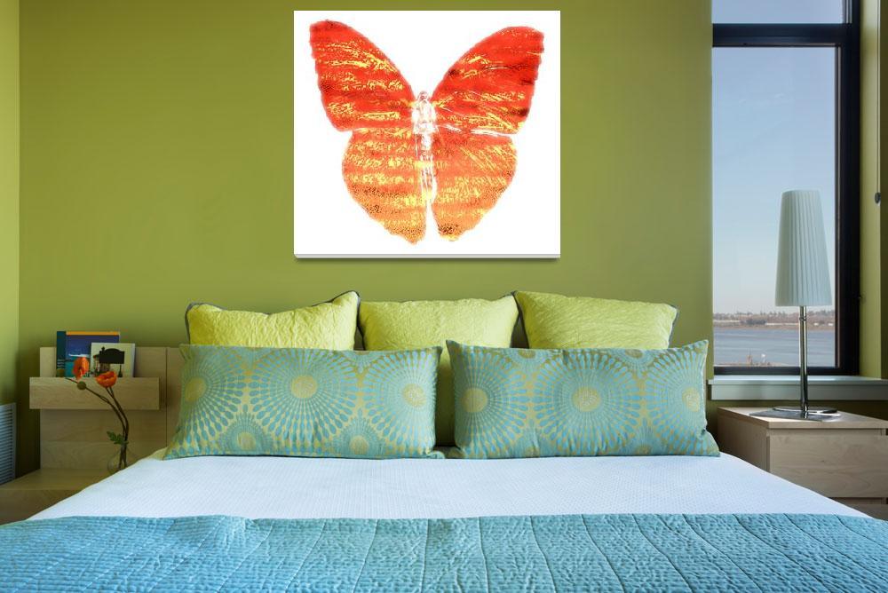 """butterfly&quot  by timaldridge"