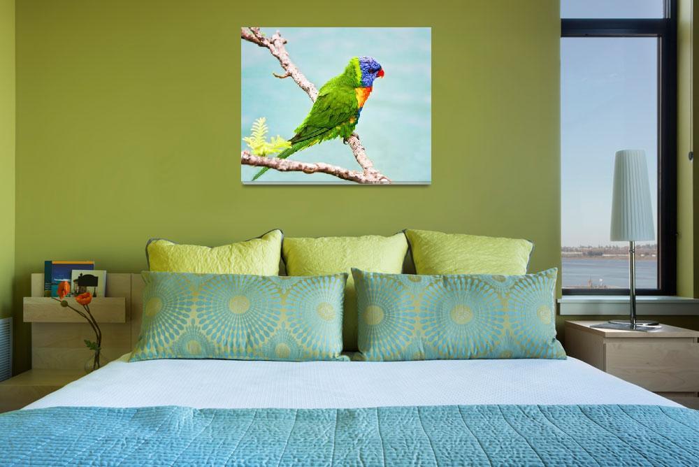 """Green, Blue Lorikeet Bird -Whitsunday, Australia&quot  (2008) by mjphoto-graphics"