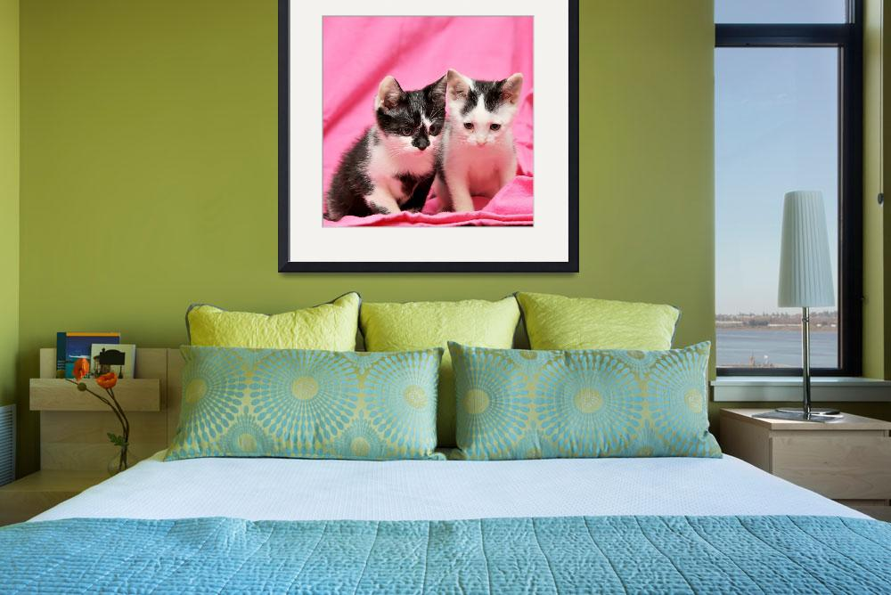 """""""Two Cute Kittens&quot  (2009) by ldfranklin"""