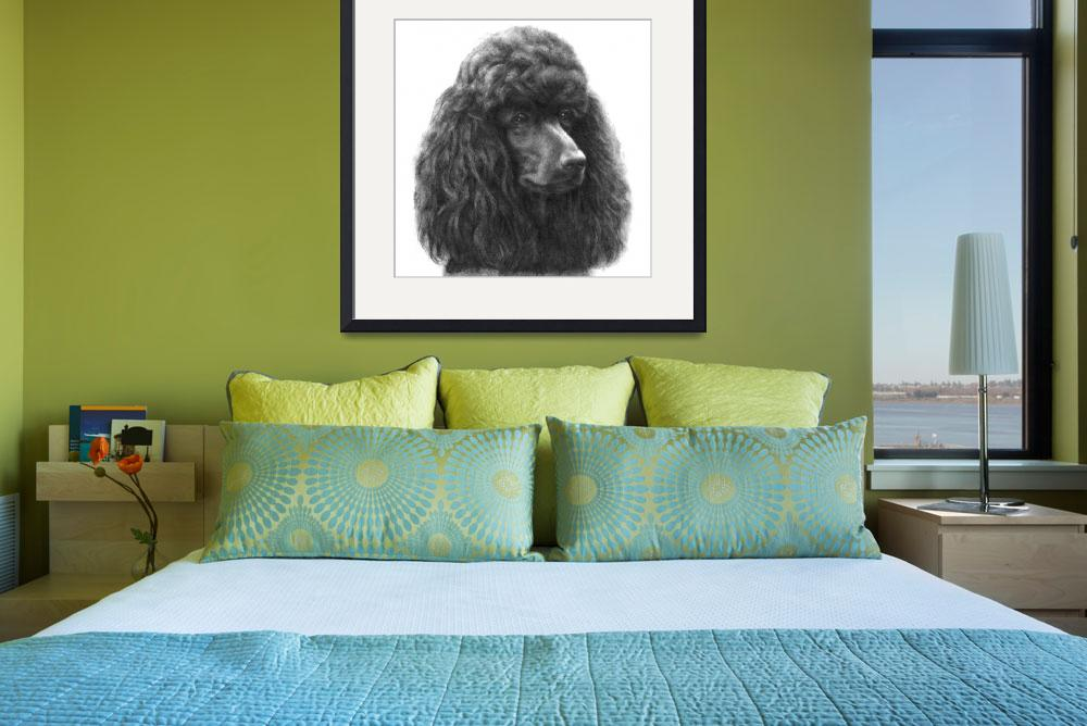 """""""Poodle (Black or Chocolate)&quot  (2006) by sdonley"""