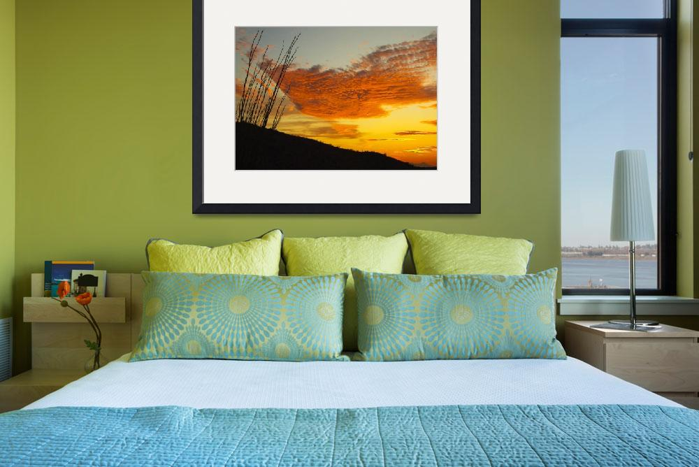 """""""Ocotillo Sunset&quot  (2005) by MichaelStephenWills"""
