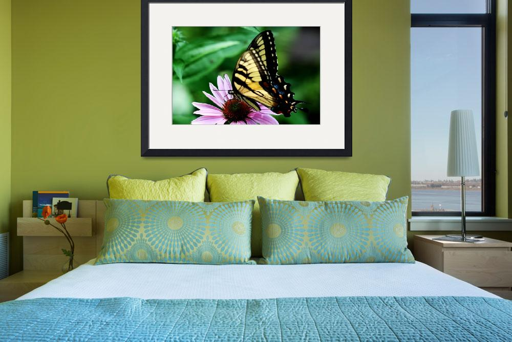 """""""Yellow Swallowtail&quot  (2011) by feophotos"""