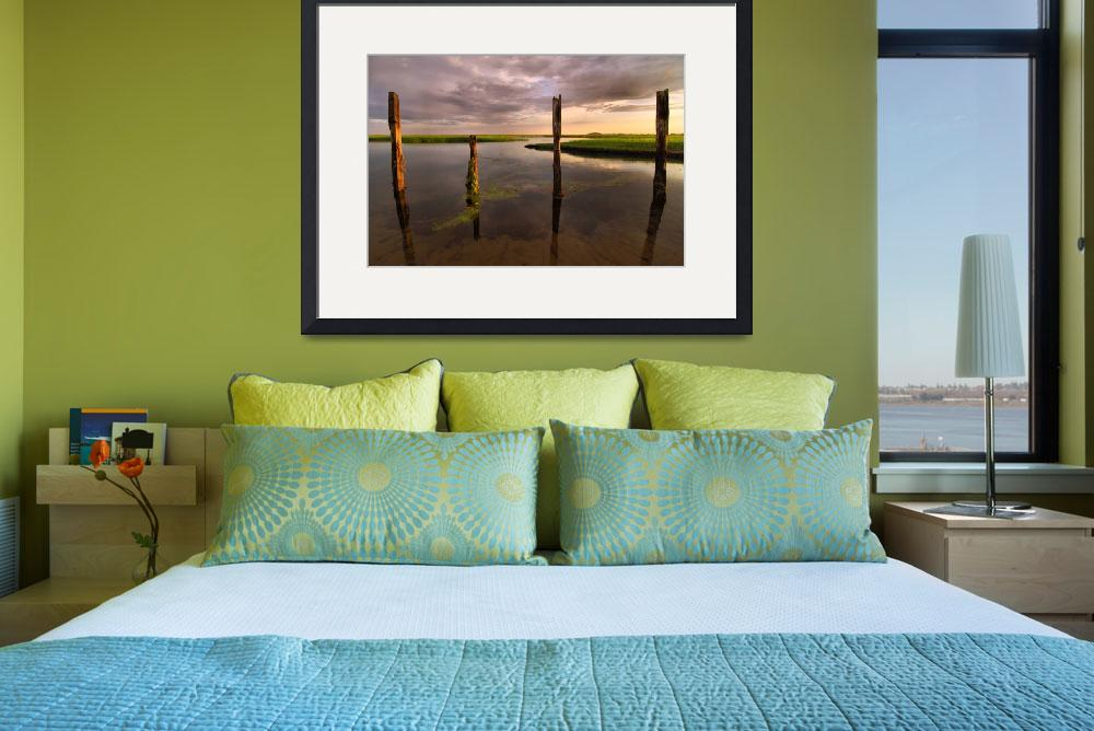 """""""Provincetown Marsh Land&quot  by PJPHOTO"""