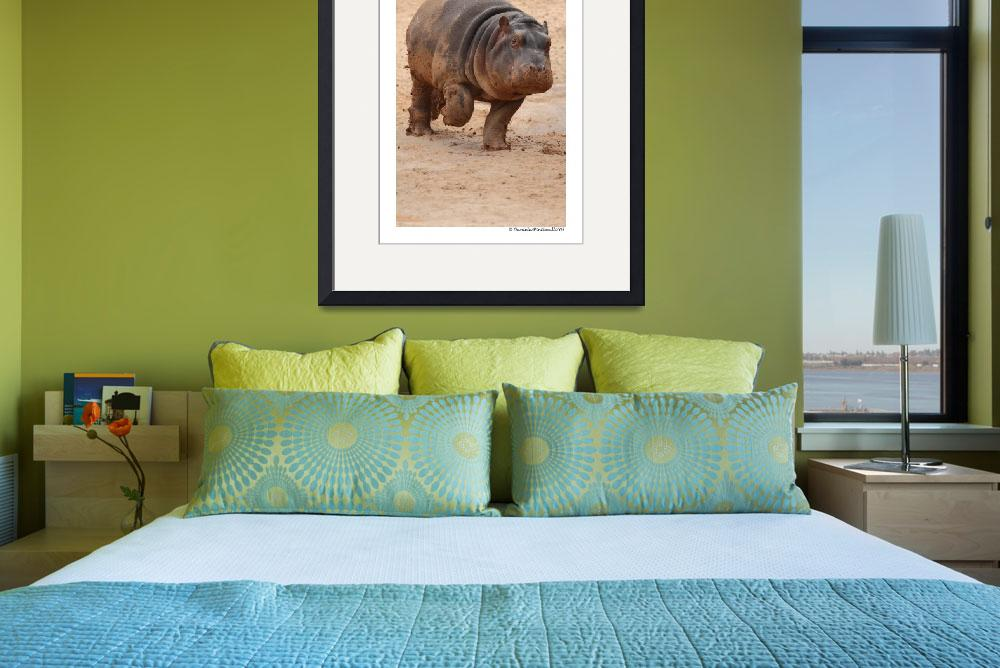 """""""Baby Hippo on the Run&quot  (2009) by WildVisuals"""