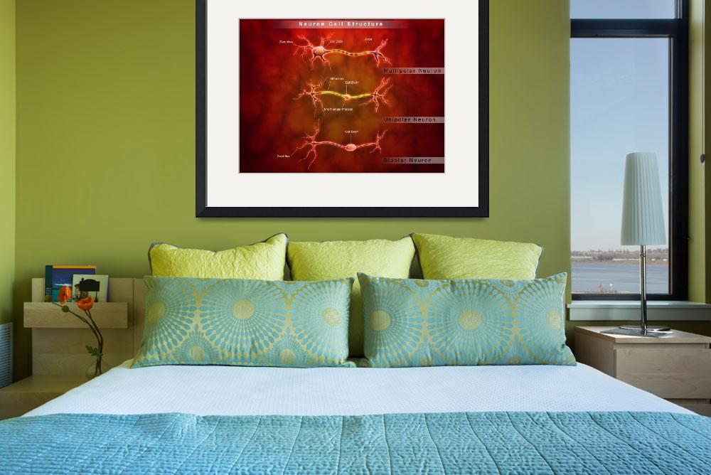 """""""Anatomy structure of neurons&quot  by stocktrekimages"""