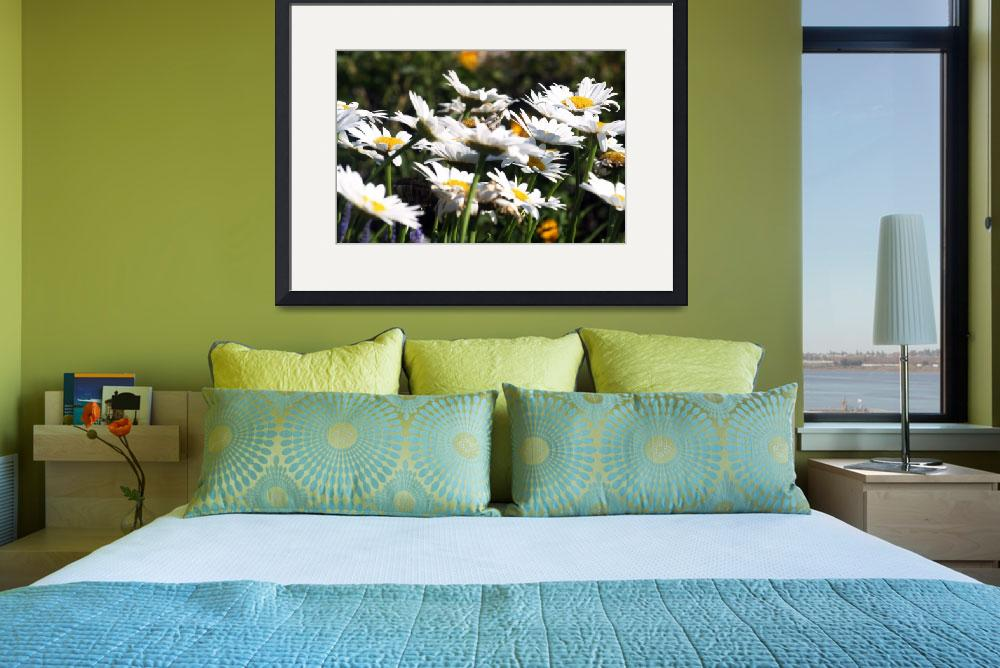 """""""Flowers Whitnall Park 005&quot  by shutterfly"""