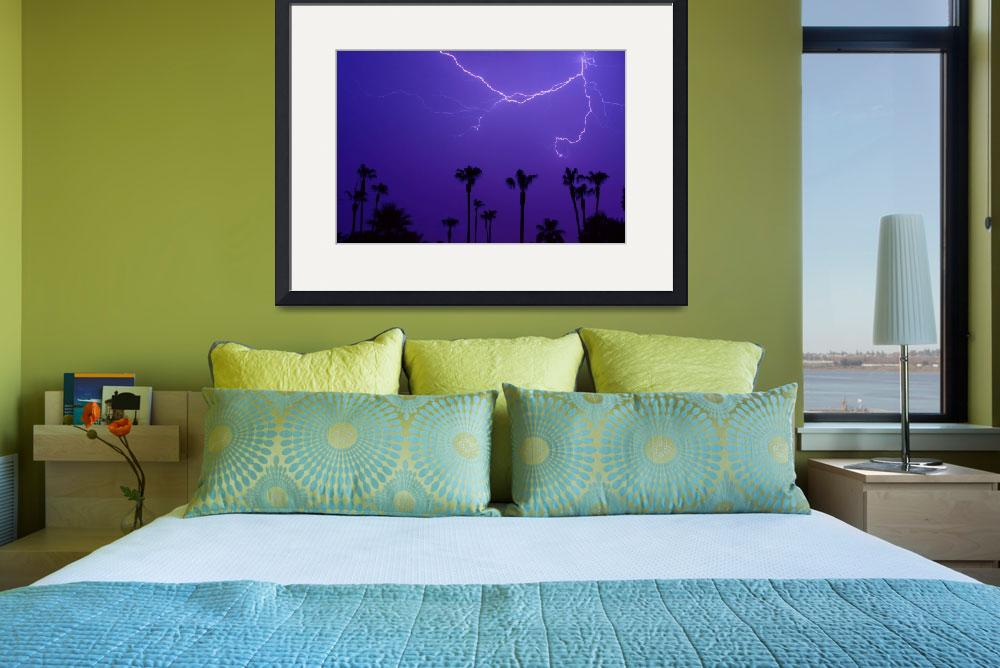 """""""Spider Lightning and Palm Trees&quot  (2007) by lightningman"""