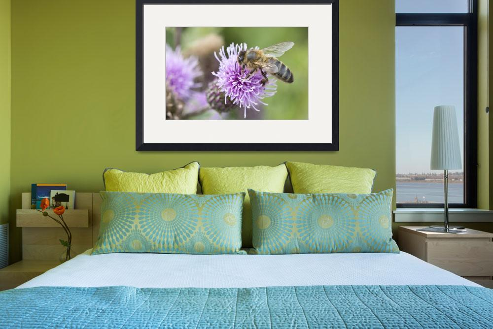 """""""Bee on a Thistle&quot  by Deebs"""