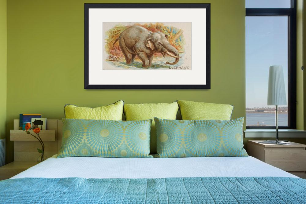 """Vintage Illustration of an Elephant (1890)""  by Alleycatshirts"