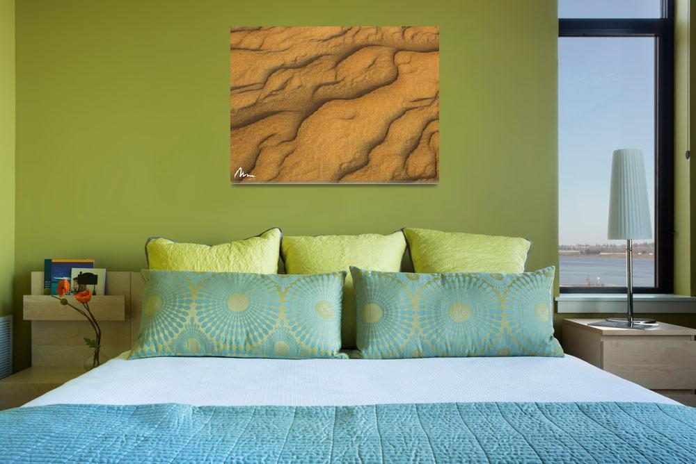 """""""Desert Floor""""  (2009) by drmoto"""