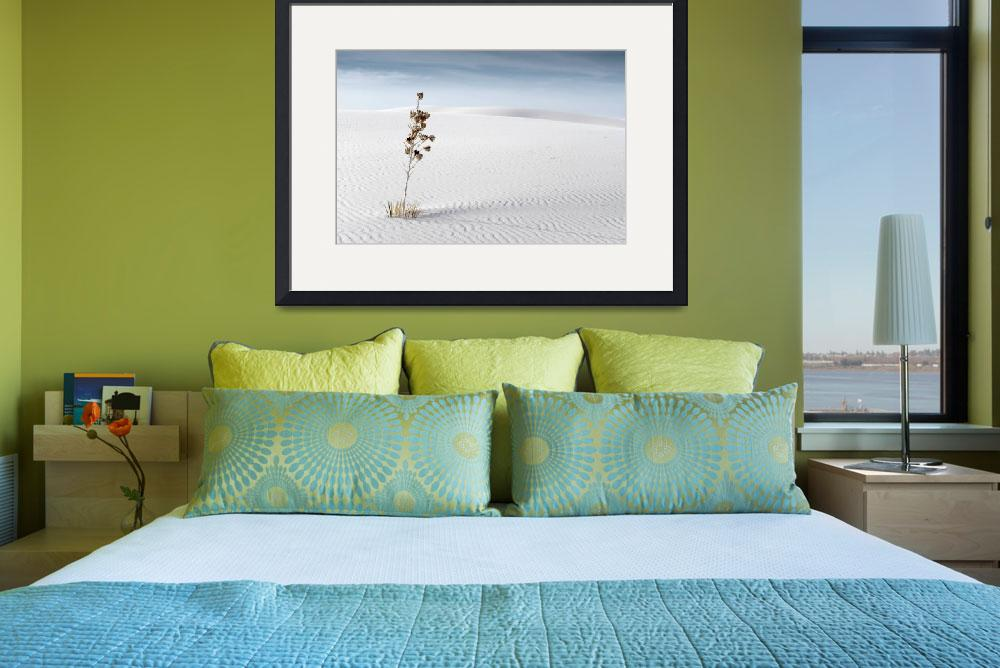"""""""Whits Sands&quot  (2010) by miir"""
