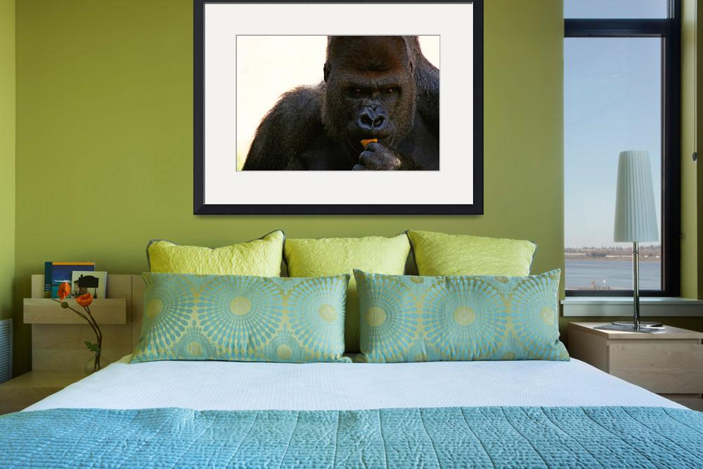 """""""Gorilla&quot  (2007) by tangerinecafe"""