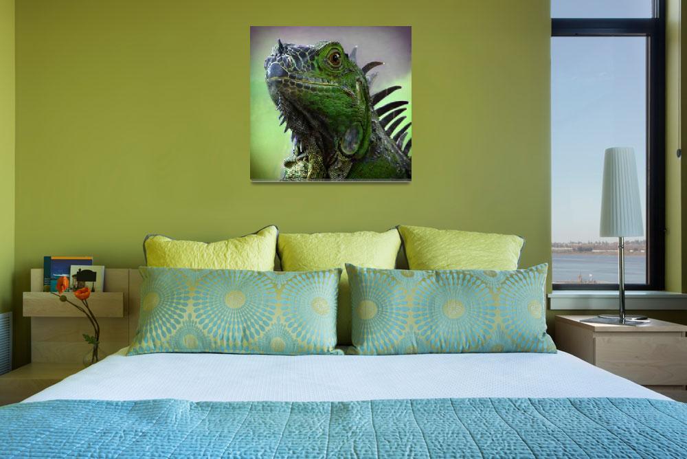 """""""Iguana""""  by dansudbergphotos"""