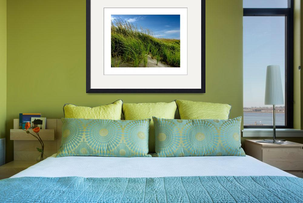 """""""Beach Grass Afternoon""""  (2012) by boltpost"""