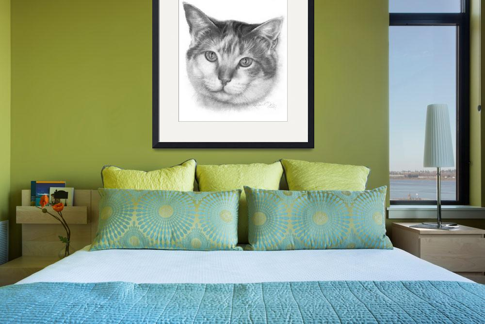 """""""Mallory, Calico Cat&quot  (2008) by sdonley"""