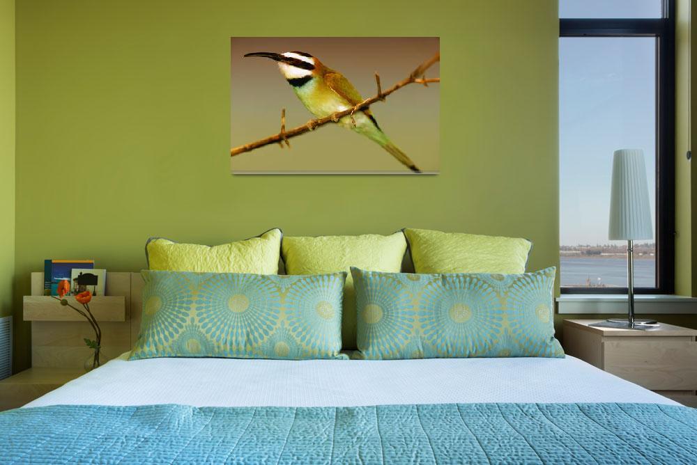 """Green African Bee Eater Bird""  (2006) by frankreggio"