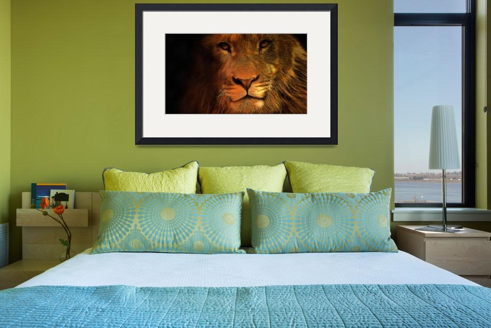 """""""Lion""""  (2015) by MRevell"""