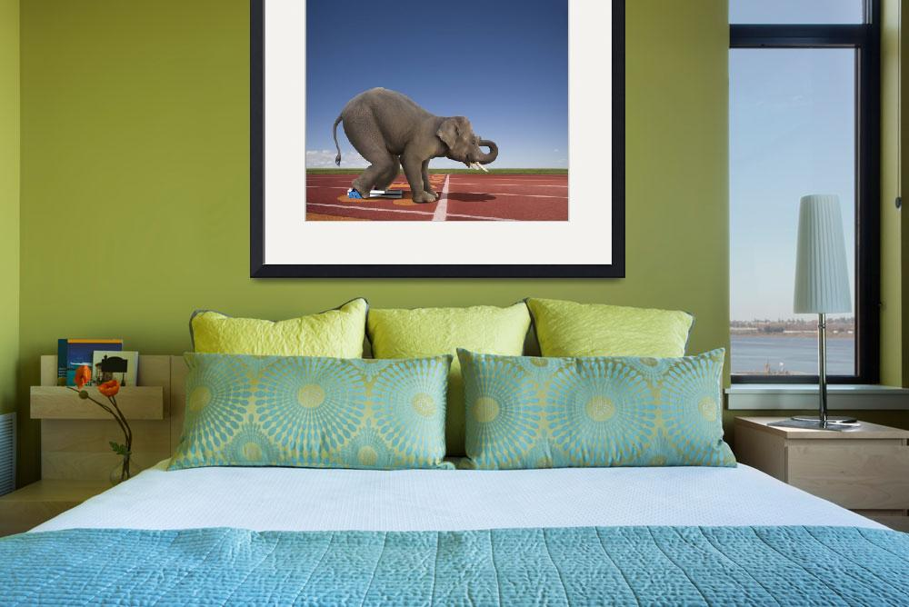 """""""Elephant Sprint&quot  (2010) by johnlund"""