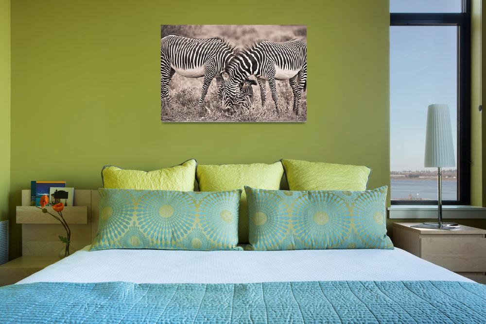 """Two Zebras Grazing Together Kenya""  by DesignPics"