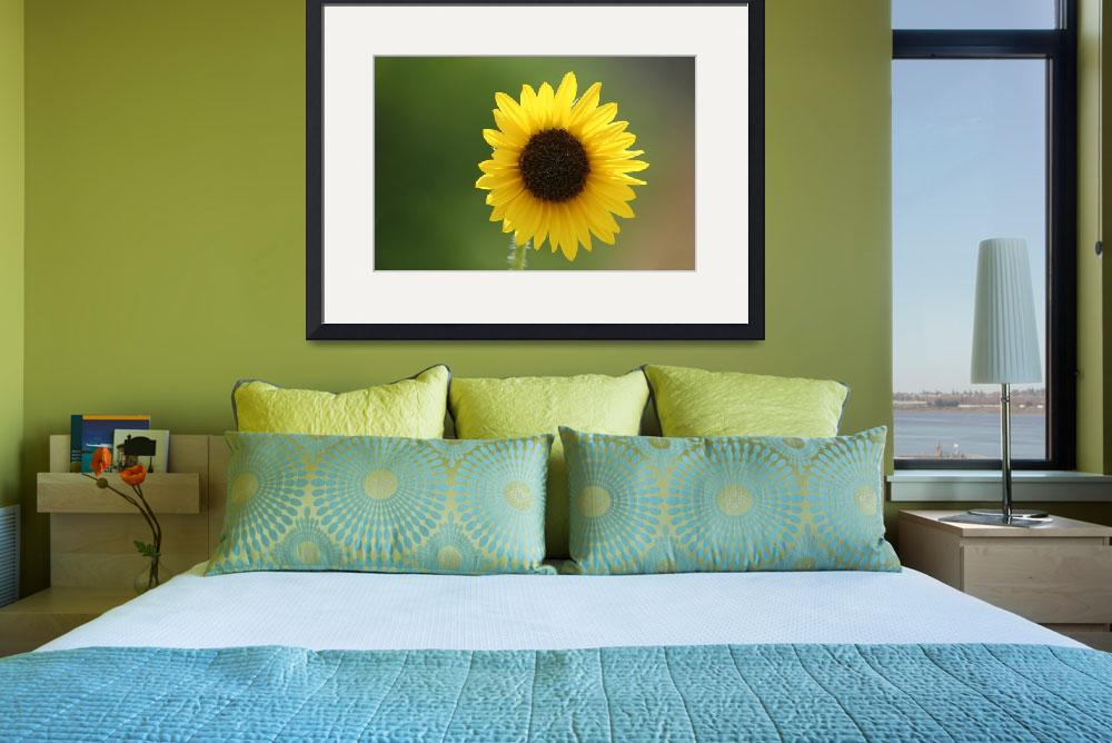"""""""Sunflower&quot  by wagoldby"""
