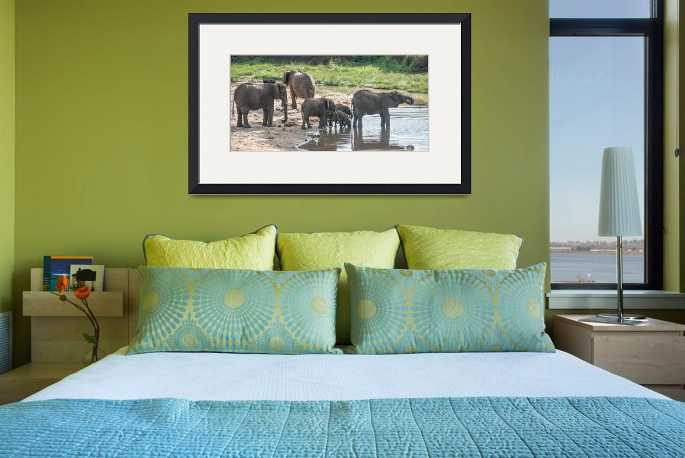 """Elephant Family at Waterhole&quot  (2014) by SederquistPhotography"
