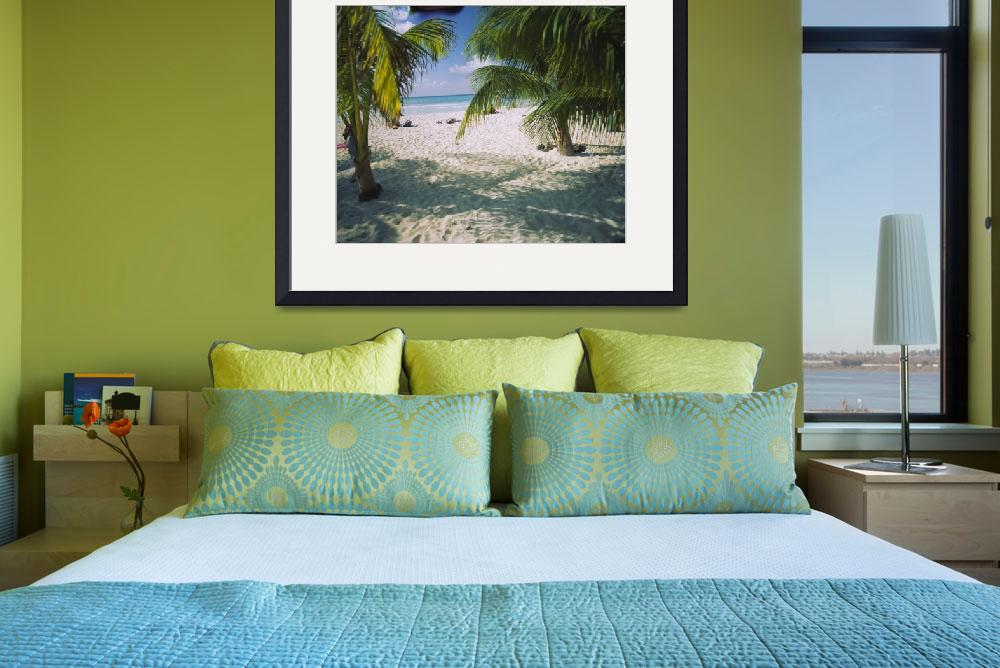 """""""""""Palm trees on the beach, North Beach, Isla Mujere&quot  by Panoramic_Images"""
