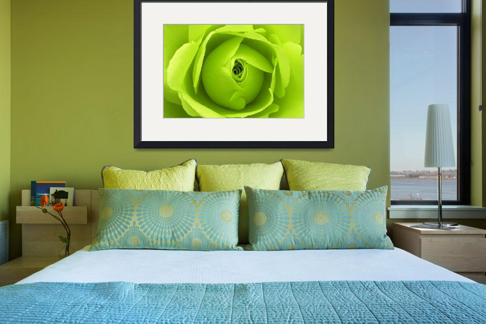 """Bright Lime Green Rose Flower&quot  (2011) by NatalieKinnear"