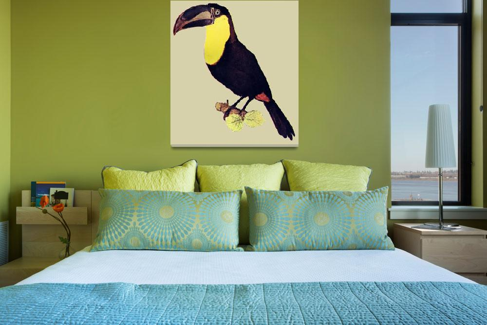 """""""toucan&quot  (2010) by birthdaygifts"""