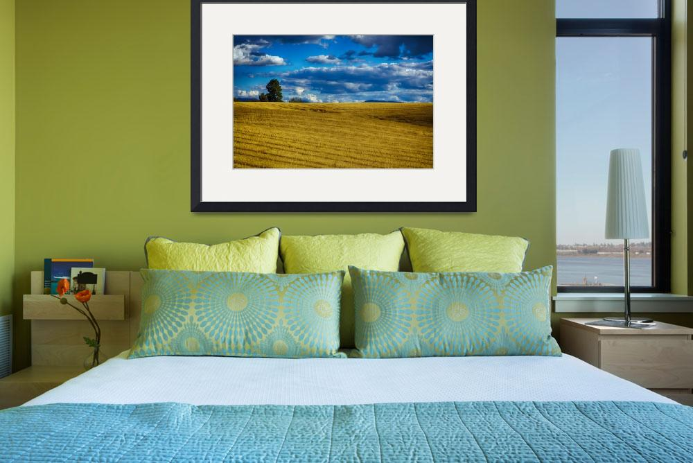 """""""Wheatfield Washington State&quot  (2016) by Doc1213"""