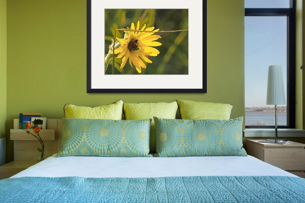 """""""black eyed susan painted&quot  by AmbRN15"""
