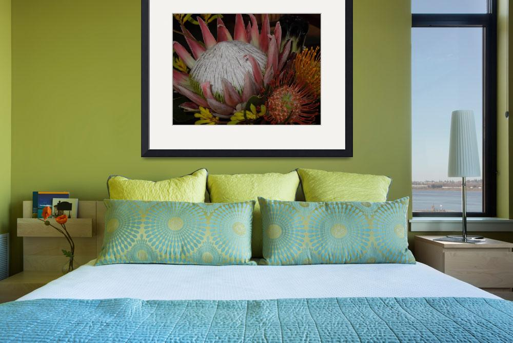 """Protea Queen&quot  (2011) by decal5"
