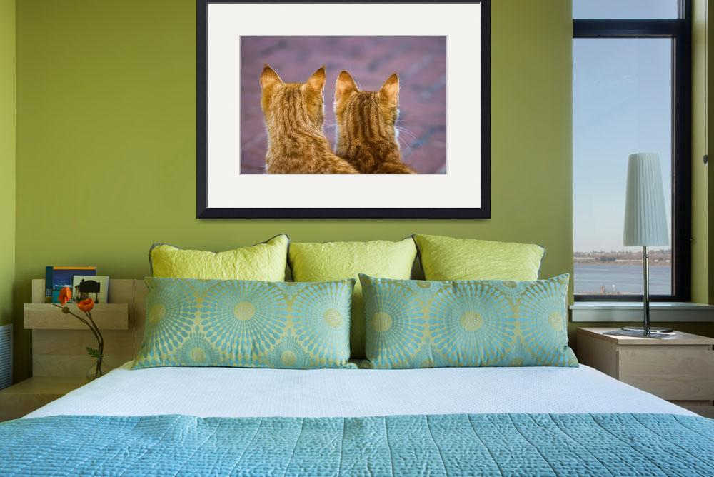 """""""Twin Kitties""""  (2011) by soikis"""