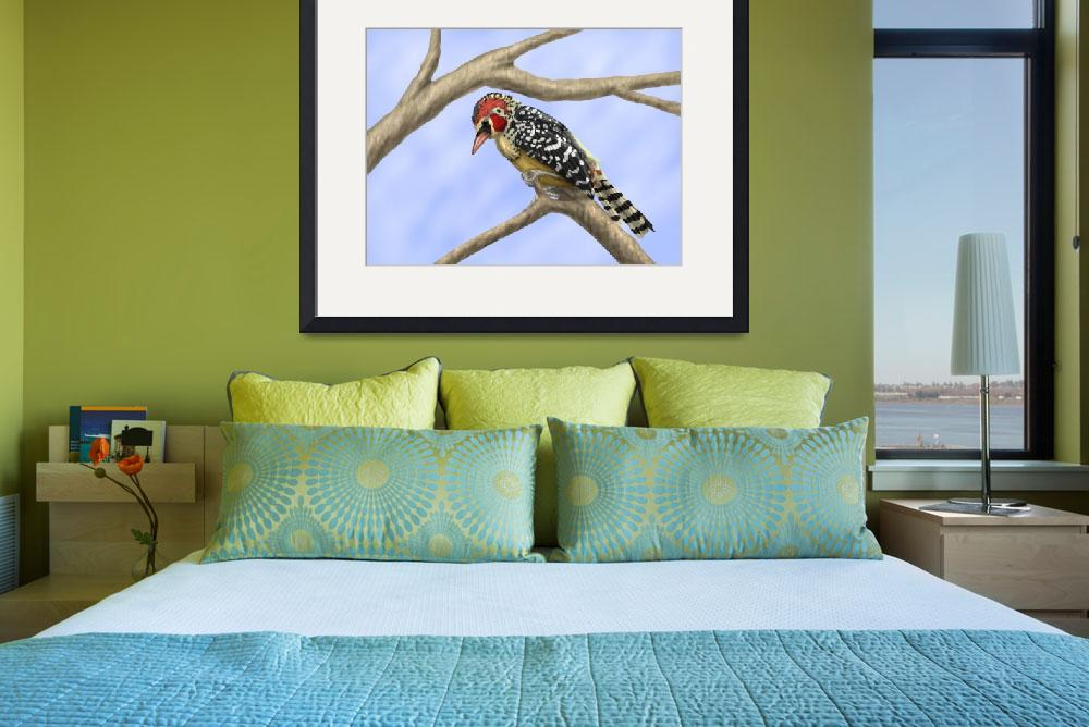 """Red and Yellow Barbet&quot  (2010) by Aiwenore"