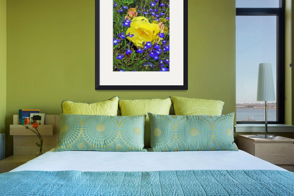 """""""yellow and Blue flowers""""  by denzil47"""