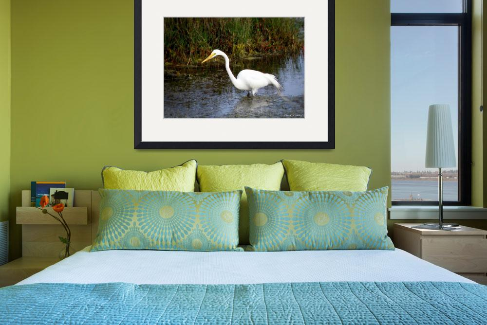 """""""Great Egret in the Wild""""  (2010) by ChrisCrowley"""