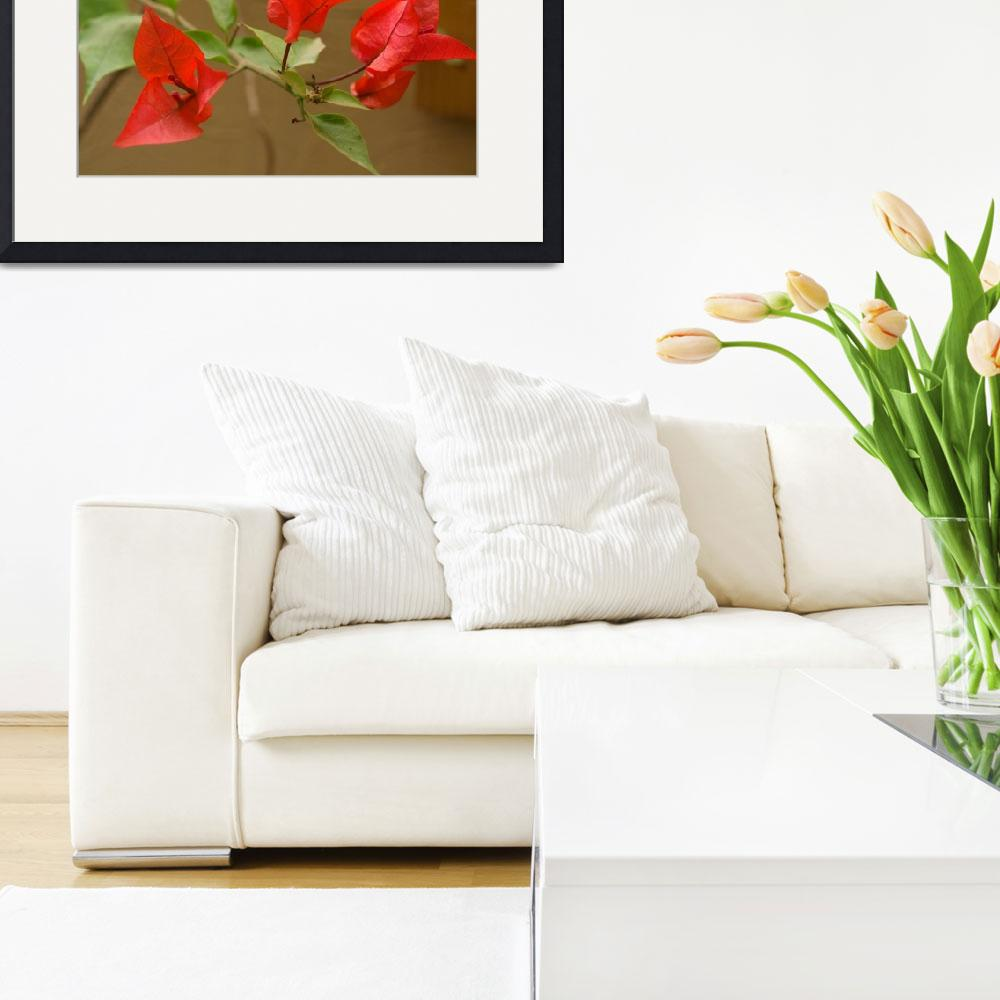 """""""RED FLOWERS&quot  by Asim"""