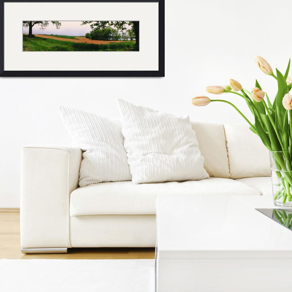 """""""Golden Farm Field Panorama&quot  by bloomingvinedesign"""