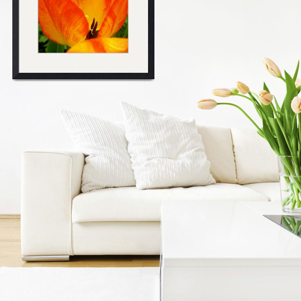 """""""Colorful Spring Tulip&quot  (2015) by vpicks"""